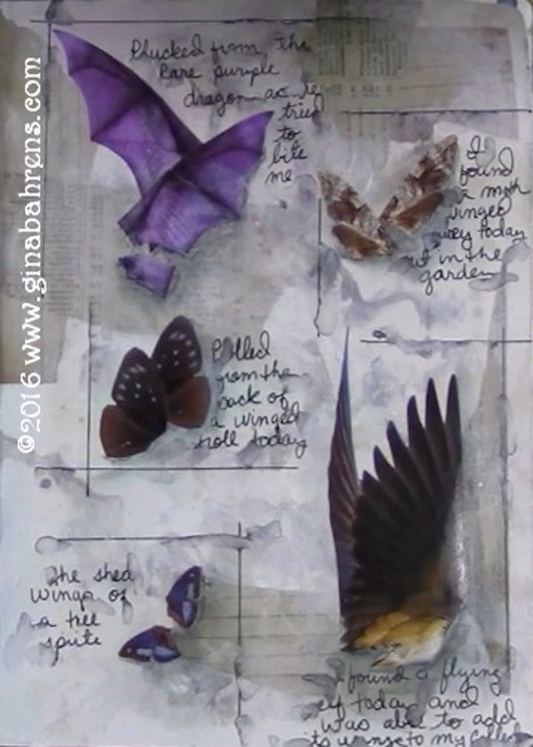 JKIS2016 Wk26 Flightly Wings Gina